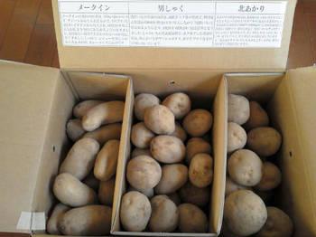 2012_3050_DCMホールディングス株主優待.jpg